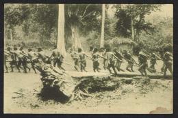 TIMOR PORTUGUÊS -  Arrastando Um Madeiro - Timor Oriental
