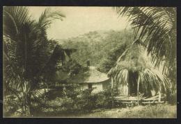 TIMOR PORTUGUÊS - Trecho De Uma Povoação Indigena - East Timor