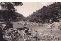 Cassis (13) - Calanque De Port Pin - France