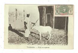 CPA MALI TOMBOUCTOU Koba En Captivité  1908 - Mali