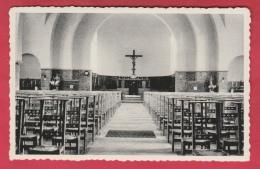 Momignies - Intérieur De L'Eglise ( Voir Verso ) - Momignies