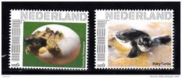 Nederland  Persoonlijke Zegel Schildpadden, Turtle 2 X   (1) - Neufs