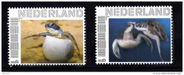 Nederland  Persoonlijke Zegel  Schildpadden, Turtle 2 X   (2) - Neufs