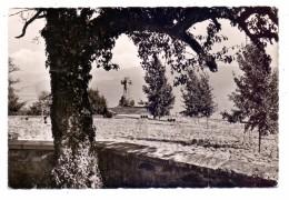 5510 SAARBURG - KASTEL, Ehrenfriedhof, 1962, Kl. Einriss - Saarburg