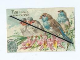 """CPA Fantaisies En Relief  -  Oiseaux  , Fleurs - """" Petit Oiseaus Parlez Pour Moix """" - Oiseaux"""
