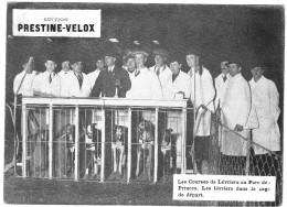 PUBLICITE PRESTINE VELOX COURSES LEVRIERS ? 1928 PARC DES PRINCES   /HONORE LEGRAS CHOUILLY   **    RARE A SAISIR ** - Advertising