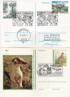 """4070v: Zwei Österreich- Ganzsachen """"Tiere In Den Bergen"""" - Wild"""