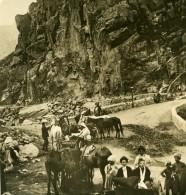 Caucase Transcaucasie Route Militaire De Georgie St Gulety Ancienne Photo Stereo NPG 1906
