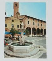 TREVISO - Piazza San Vito - Animata - Treviso
