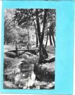 ANDERNOS LES BAINS - 33 -    Le Ruisseau Du Moulin - ENCH - - Andernos-les-Bains