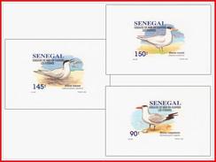 Senegal 1153/55  3 Feuillets De Luxe