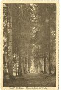 Saint Léger Chemin De Croix De Wachet - Saint-Léger