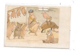 9352 - CAP COCHONS à La Salle De Sports, - Schweine