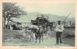 64-CAMBO- ATTELAGE BASQUE - Cambo-les-Bains
