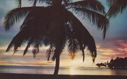 PANAMA--Amanecer En Una Isla De SAN BLAS-- Voir 2 Scans - Panama
