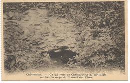 Chêvremont. --Ce Qui Reste Du Château-Neuf Du VIIè Siècle - Belgique