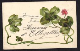 CPA Souvenir D'Ellezelles - Ellezelles