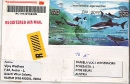 Delphin Gangetic Dolphin Platanista Gangetica Butanding Rhincodon Typus - India