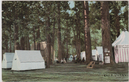 YOSEMITE VALLEY. - Camp Curry Transportation Office - CPA Very Rare Old Postcard Card - Yosemite
