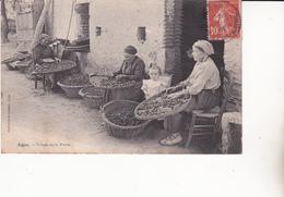 CPA (47) AGEN. Triage De La Prune, Femme Au Triage, Enfant...B42 - Artisanat