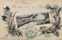 D'Angers Je Vous Envoie Ces Fleurs - Vue De La Ville Basse - Carte E.L.D. - Souvenir De...