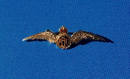 Broche Militaire, Royale Air Force, RAF. - Militares