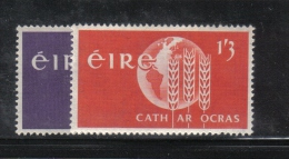 W1963 - IRLANDA 1963 , Serie N. 157/158  ***  MNH Fame - 1949-... Repubblica D'Irlanda