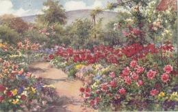Illustrateur  - Old Mille Garden Wanook The Rose Garden - Unused TTB - 1900-1949