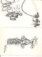 LE MARSUPILAMI   2 CARTES - Fumetti