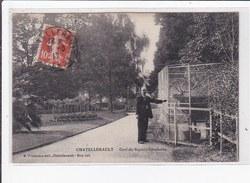 CHATELLERAULT : Cerf Du Square Gambetta - Très Bon état - Chatellerault
