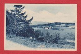 Bischeim  --  Refuge Du Muckenbach - France