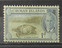 Cayman Islands 1950 A Green Turtle No Gum - Cayman (Isole)