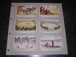 CHASSE ET PECHE AU CONGO BELGE Afrique Colonie Belgique  Liebig  Série Complète De 6 Chromos Trading Cards Chromo - Liebig
