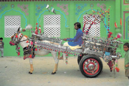 Asie-DONKEY Cart Popular Interior Or Loaning In Sind And Provinces Of  PAKISTAN (âne) (Venus Ageny 255) *PRIX FIXE - Pakistan