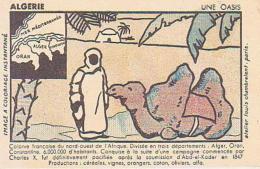 Louis Chambrelent   96       ( Carte à Colorier )  Algerie  ( Publicité Phosphatine Falières ) - Illustrateurs & Photographes