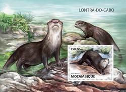 Mozambico 2016, Otter, BF - W.W.F.