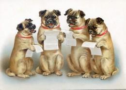 Chorale De Chiens - Dogue - Vieux Papiers