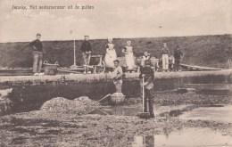 YERSEKE GEM. REIMERSWAAL CA. 1911 OESTERCULTUUR HUITRES VISSERIJ ARBEIDERS KLEDERDRACHT - 2 SCANS - Yerseke