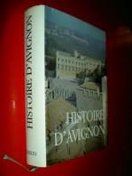 Histoire D' Avignon   1979  De La Préhistoire Au XIXe Histoire Vaucluse - History
