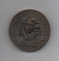 Médaille Commémorative Du: 3ème Centenairede Saint-Gobain . COLBERT . Fondateur. - Professionnels / De Société