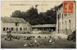 78 VERNEUIL-sur-SEINE  -Intérieur De La Ferme-animée,volailles,, - Verneuil Sur Seine
