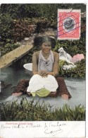 PANAMA - American Wash-lady - Panama