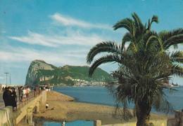 GIBLALTAR--rock Of Gibraltar From The Bay-- Voir 2 Scans - Gibraltar