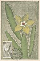 D26420 CARTE MAXIMUM CARD 1957 IFNI - CACTUS CP ORIGINAL - Cactusses