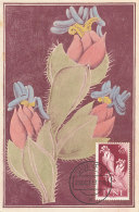D26421 CARTE MAXIMUM CARD 1957 IFNI - CACTUS CP ORIGINAL - Cactusses