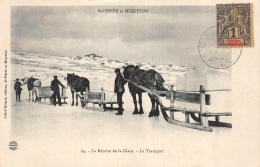 CPA Saint Pierre Et Miquelon La Recolte De La Glace Le Transport - Saint-Pierre-et-Miquelon