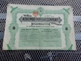 THE KOKUMBO (ivory Coast) COMPANY (titre De 5 Actions) 1909 - Zonder Classificatie