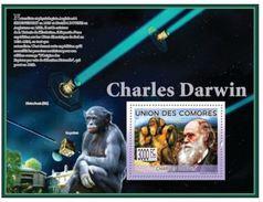 Comores Charles DARWIN Apes Singes
