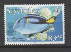 SEYCHELLES  N°882  Paraconturus  Hepatus - Fische