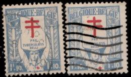 Belgique 1925. ~ YT 236 Par 2 - Pour Les Tuberculeux